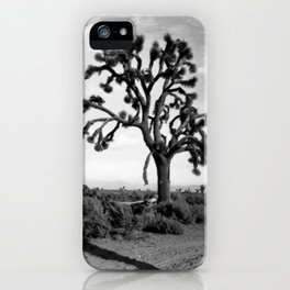 A Joshua tree (Yucca Mohaviensis) in the Mojave Desert near Lancaster, 1904 iPhone Case