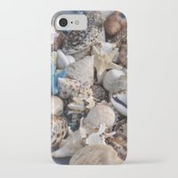 seashell iPhone & iPod Cases featuring Seashell by Sowthistle