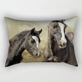 Feldspar and Ohanzee Rectangular Pillow