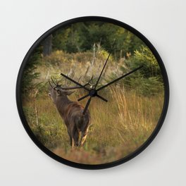 Red deer, rutting season Wall Clock