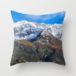Portage Valley Termination Dust - Alaska Throw Pillow