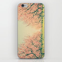 Vintage Spring  iPhone Skin