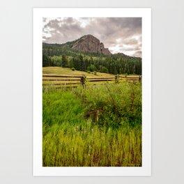Newton_Spring, Southwestern Colorado Art Print