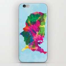 Watercolor U.S.A. Map iPhone & iPod Skin