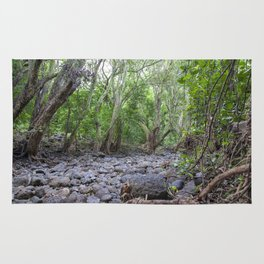 river lava rock Rug