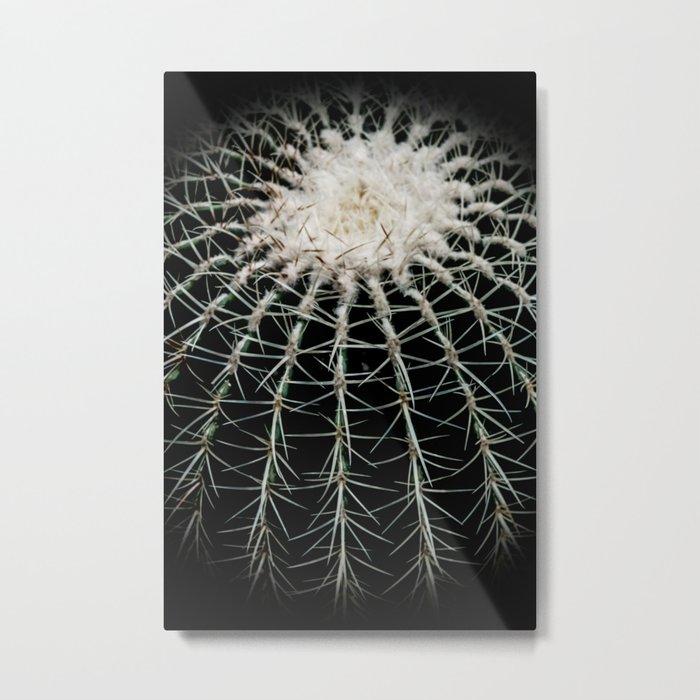 Carinate Cacti I Metal Print