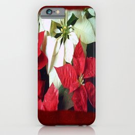 Mixed Color Poinsettias 2 Blank P5F0 iPhone Case