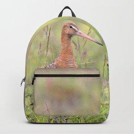 Watercolor Bird, Godwit 04, Akureyri, Iceland Backpack