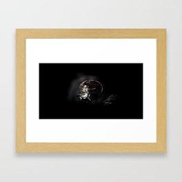 TheLastSamurai Framed Art Print