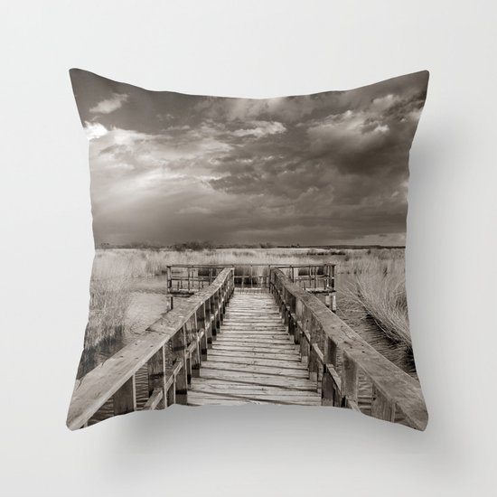 Stormy weather at the lake. Vintage Throw Pillow