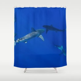 Hawaiian Shark V Shower Curtain