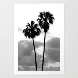 Tropical Darkroom #256 Art Print