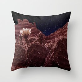 Desertlight Throw Pillow