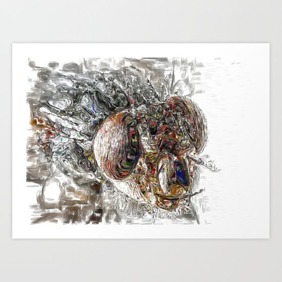 Musca Domestica aka The Fly . . .  An abstract Art Print