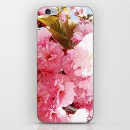 Pink Sorbet iPhone Skin
