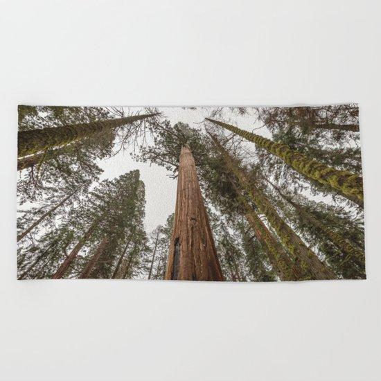 Sequoia Stretch Beach Towel