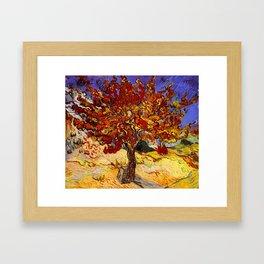 Vincent Van Gogh Mulberry Tree Framed Art Print