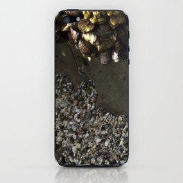 seawall iPhone Skin