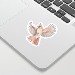 Lady Cardinal Sticker