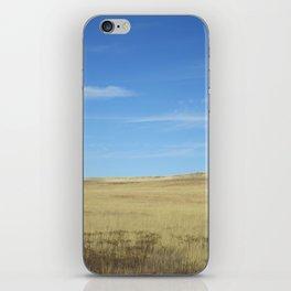 Colorado, 2 iPhone Skin