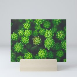 Coming up Green Mini Art Print