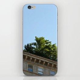 Rooftop Garden iPhone Skin