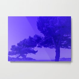 Blue Summer Pines Metal Print