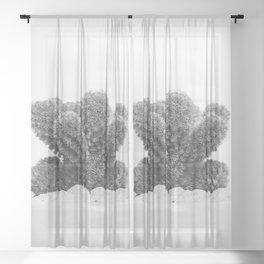 Modern Cactus IX Sheer Curtain
