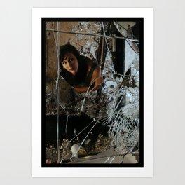 Broken Reflection Art Print