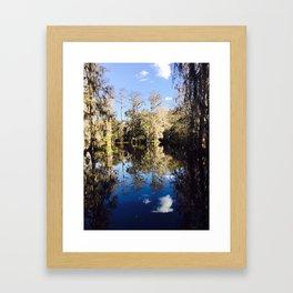 Mirror Swamp Charleston Plantation Framed Art Print