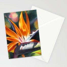 Bird of Paradise 20 Stationery Cards