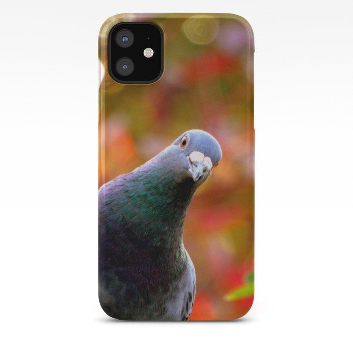 Pigeons iPhone 11 case