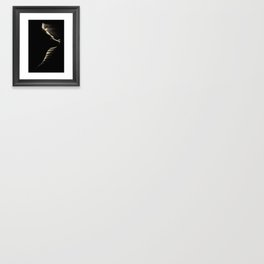 The Mountain Wolf Framed Art Print