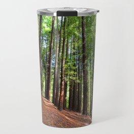 Sequoias in Cabezon de la Sal, Spain. Travel Mug