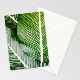 Big Leaves - Tropical Nature Photography Stationery Cards