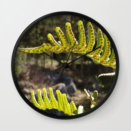 Sweet Fern Wall Clock