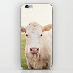 Bessie iPhone & iPod Skin