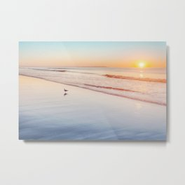 Gull on wet sand at sunrise on Maine beach Metal Print