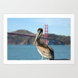 Pelican Perch Under the Golden Gate Art Print