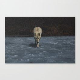Bicho 3 Canvas Print