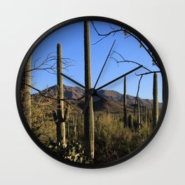 Saguaro Cactus at Picture Rocks II Wall Clock