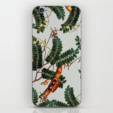 Under the Tamarind Tree #society6 #decor #buyart iPhone & iPod Skin