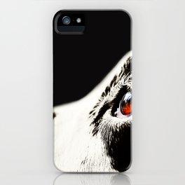 The Amber Eye. Kokkie. Dalmation Dog iPhone Case