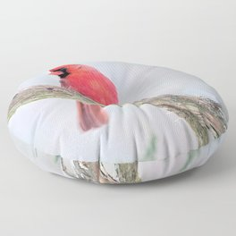 "Cardinal: ""Do You Hear What I Hear?"" Floor Pillow"
