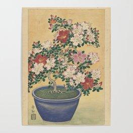 Blooming azalea in blue pot - Ohara Koson (1920 - 1930) Poster