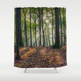 Beech Woodland Sunrise Shower Curtain