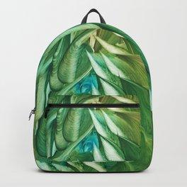 Balius Backpack
