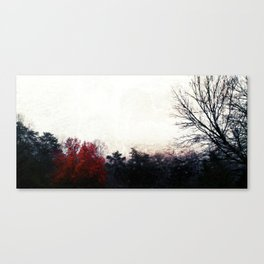The Red Woman Canvas Print