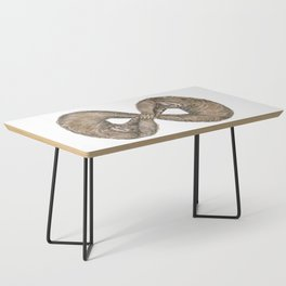 Infinity of Sloth Coffee Table