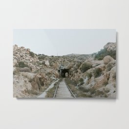 Train Tunnel Metal Print